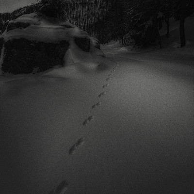 Footspets in the Night (Val delle Lanze - Venetian Alps)